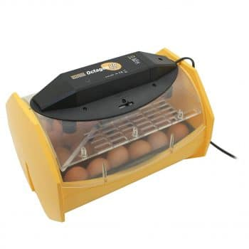 Brinsea Products Egg Incubator