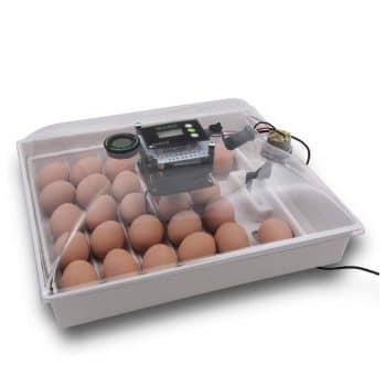 IncuView Egg Incubator