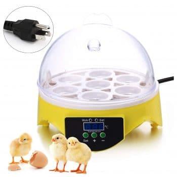 Noeler Egg Incubator