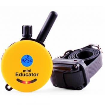 Educator E-Collar Remote Dog Training Collar- Give out a tapping sensation