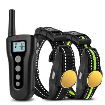 Basic Remote Rechargeable Electric Shock Collar- Adjustable nylon collar