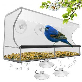 Window Bird Feeder with Suction Cups