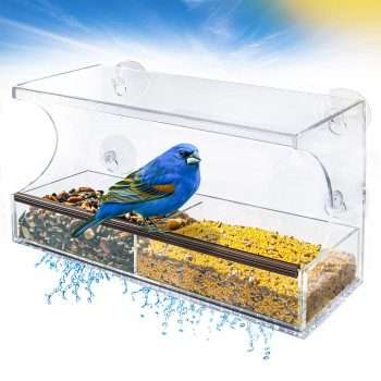 Go Simply Amazing Window Bird Feeder