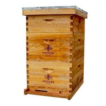 Hoover Hives Bee Hive