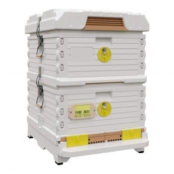 Apimaye Ergo Plus 10 Frame Langstroth Insulated Bee Hive