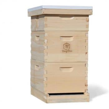 Busy Bee's -n- More Bee Hive