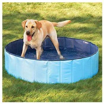 N&M Products Pet Pool