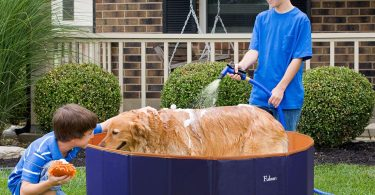 pet pool bathing tubs
