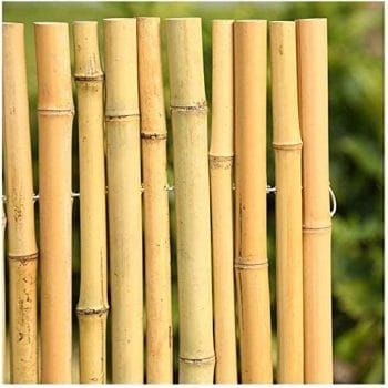 Jin-Siu Bamboo Outdoor Privacy Fence for Garden