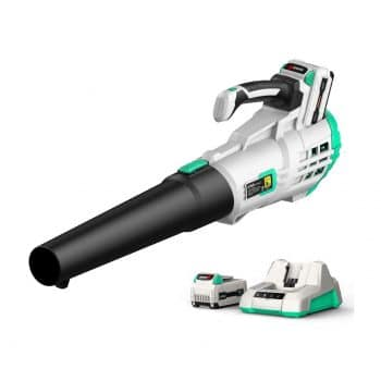 Litheli Cordless Leaf Blower with a 2.0Ah Battery and Charger