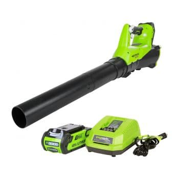 Greenworks Electric Leaf Blower with Battery and Charger