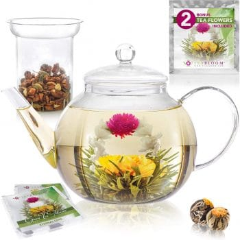 Teabloom Glass Teapot Stovetop and Microwave Safe (Holds 4-5 Cups)